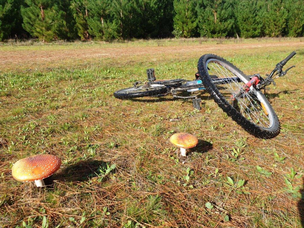No chain on that bike ...