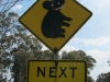 Mean Drop Bear