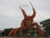 Giant Lobster - Kingston SE