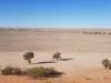 Big Red Bash site